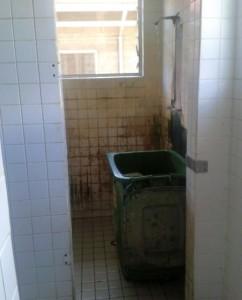 die Dusche!!! - damit man versteht warum ich raus will!!!