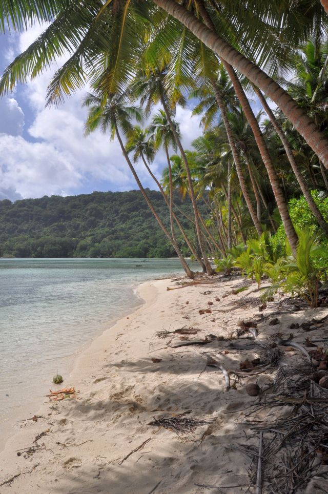Abb. 09: Strand von Hayter Bay