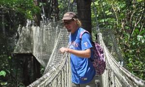 mit der Seilbrücke durch den Regenwald