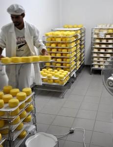 ... guter Käse