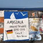Horta-Amygdala